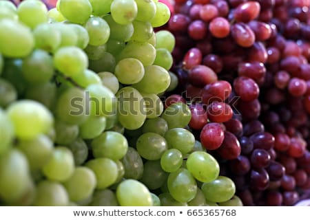 Red, black and white (green) grapes on market Stock photo © boggy