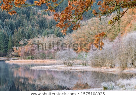 Winter chilly morning in highlands landscape with sunrise Stock photo © X-etra
