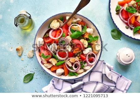 Caprese Panzanella Italian Salad Stock photo © Alex9500