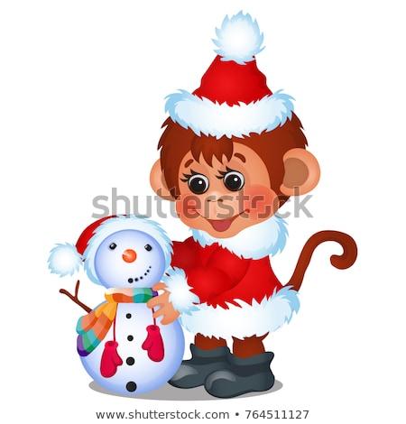 かわいい · 猿 · サンタクロース · 雪だるま · 孤立した · 白 - ストックフォト © Lady-Luck