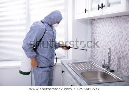 Pest Control Worker Spraying Pesticide Near Kitchen Sink Stock photo © AndreyPopov