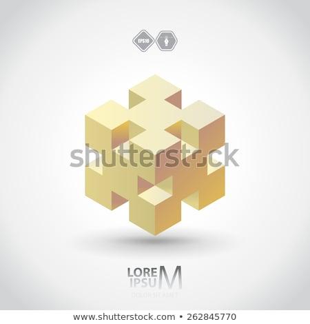 Kubus grafisch ontwerp sjabloon vector geïsoleerd illustratie Stockfoto © haris99