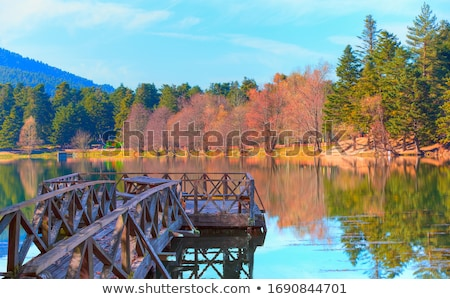 Beautiful autumn nature Stock photo © Anna_Om
