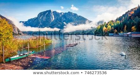 Oostenrijk meer landschap bomen zomer Stockfoto © borisb17