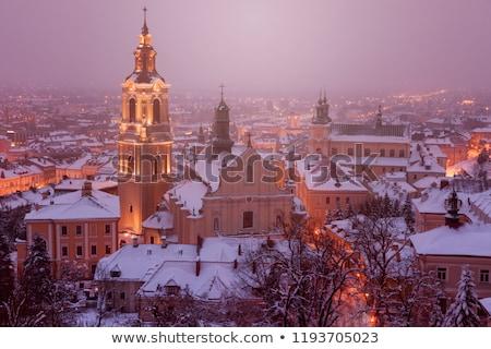 Kathedraal winter landschap huis stad ijs Stockfoto © benkrut