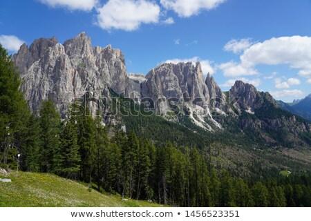 Catinaccio mountain, Italian Dolomites Stock photo © Antonio-S