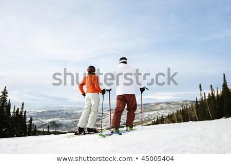 Arka atış erkek kayakçı manzara kar Stok fotoğraf © photography33