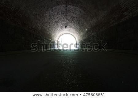 Lights in tunnel Stock photo © ruzanna