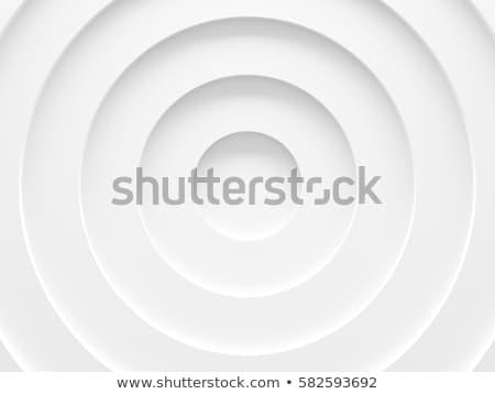 マクロ · リング · デジタル一眼レフ · カメラ · 白 · 金属 - ストックフォト © jakatics