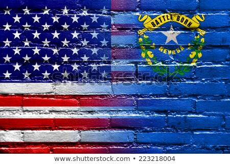Grunge bayrak Nevada tuğla duvar boyalı amerikan Stok fotoğraf © vepar5