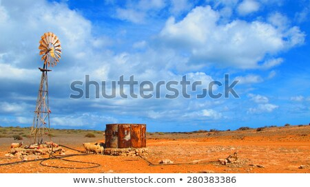 пастбище · овец · облака · облачный · Blue · Sky · небе - Сток-фото © julietphotography