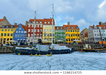 зима Дания льда морем лебедя плаванию Сток-фото © jeancliclac