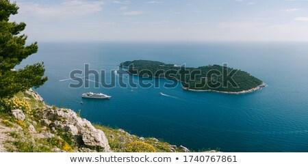 Seenlandschaft Kiefer Schiff Wasser Meer Sommer Stock foto © goce