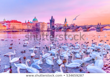 Прага · замок · моста · зима · чешский · Чешская · республика - Сток-фото © bloodua