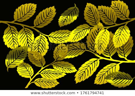 Abstract dark background with red golden foliage and swirls Stock photo © wenani