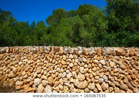 Masonry stonewall typical from Mediterranean in Menorca Stock photo © lunamarina