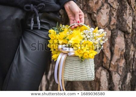 Kız sepet nergis bahçe Paskalya Stok fotoğraf © monkey_business