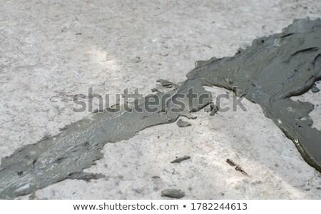 Fresh Concrete Walkway Stock photo © pancaketom