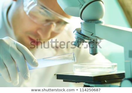 közelkép · tudós · kéz · teszt · minta · labor - stock fotó © dolgachov