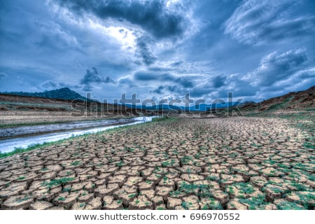 aszály · föld · klímaváltozás · forró · nyár · széna - stock fotó © xuanhuongho
