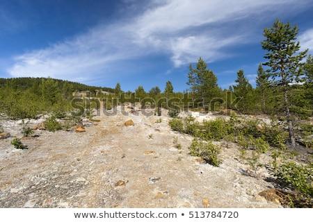捨てられた 銅 鉱山 ノルウェー 水 木材 ストックフォト © slunicko