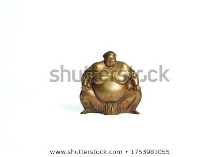 Athletes sumo fight Stock photo © jossdiim