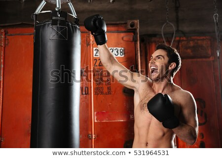 Screaming agressive boxer training in a gym with punchbag Stock photo © deandrobot
