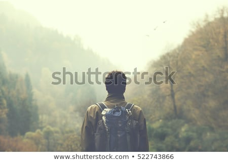 Man with backpack walking on the path in forest Stock photo © wavebreak_media