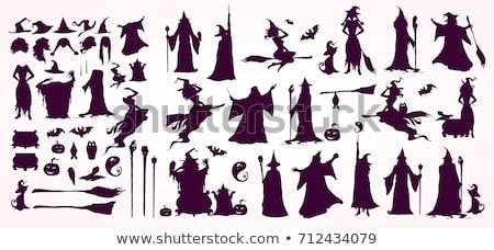 Bruxa gato cabo de vassoura ilustração halloween Foto stock © Krisdog