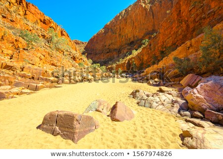 Dry river creek bed Central Australia Stock photo © lovleah