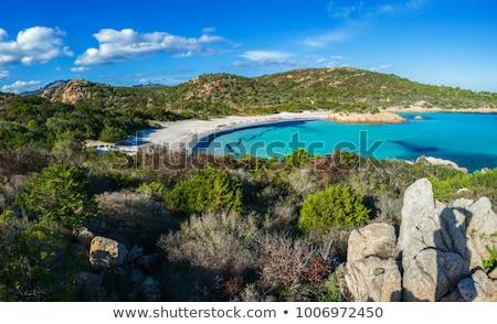 Crystalline sea beach Stock photo © papa1266