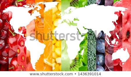 Mondo frutta verdura colorato illustrazione mondo Foto d'archivio © lenm