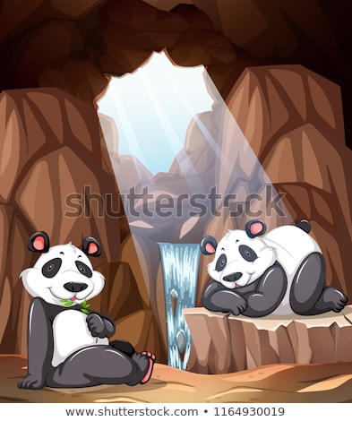 Panda living in the cave Stock photo © bluering