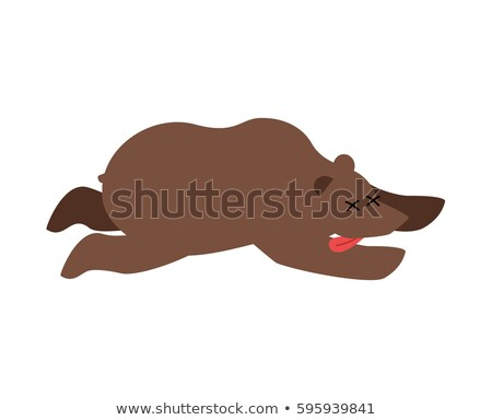Dead bear. wild animal deceased. Corpse of grizzly Stock photo © popaukropa