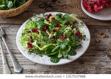 Spring salad with wild chickweed, nut lettuce and pomegranate stock photo © madeleine_steinbach