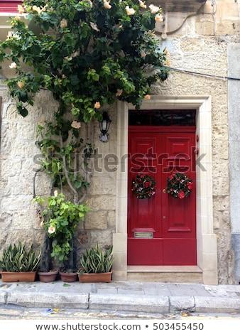 Tradicional puerta principal Malta detalle edificio casa Foto stock © boggy