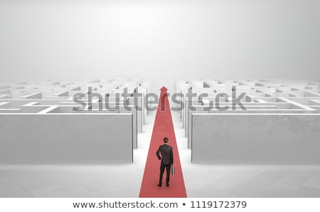 Businessman going straight on two mazes Stock photo © ra2studio