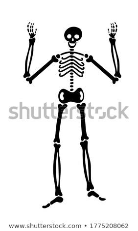 squelette · mains · noir · typographie · design · résumé - photo stock © Vicasso
