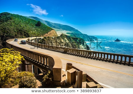 view of road at big sur coast in california Stock photo © dolgachov