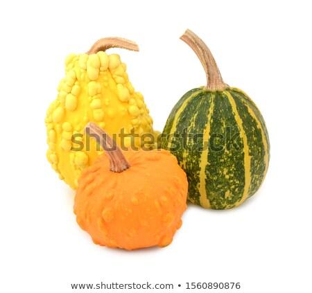 3  黄色 オレンジ 縞模様の 緑 ストックフォト © sarahdoow
