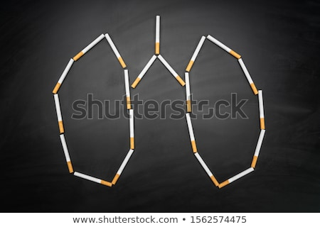 Lungs Made With Cigarettes On Blackboard Stock photo © AndreyPopov