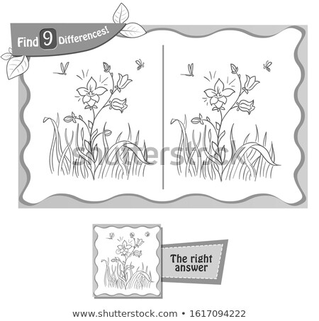 blooming flower game 9 differences Stock photo © Olena