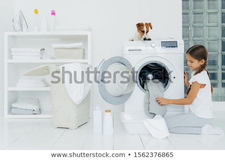 Small pedigree dog poses on white floor in laundry room near white linen drying on clothes horse. An Stock photo © vkstudio