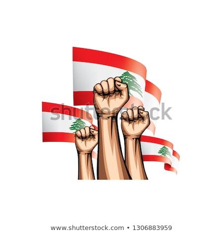 Revolution in Lebanon Stock photo © Anna_Om