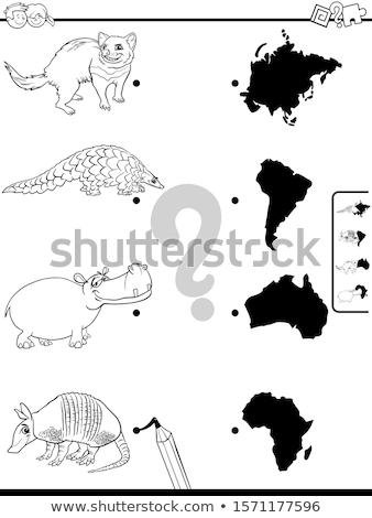 Wedstrijd dieren continenten onderwijs spel kinderen Stockfoto © izakowski