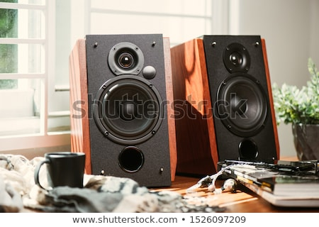 Estéreo alto-falantes branco música azul alto-falante Foto stock © magraphics