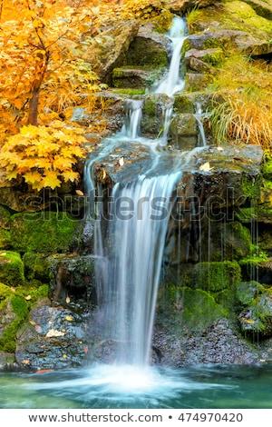 Autumn Waterfall Landscape Photo stock © Taiga