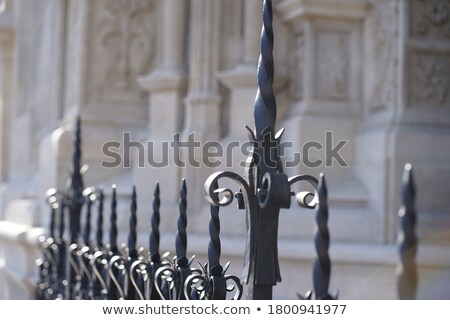 Young Black Man with wrought iron fence stock photo © Schmedia