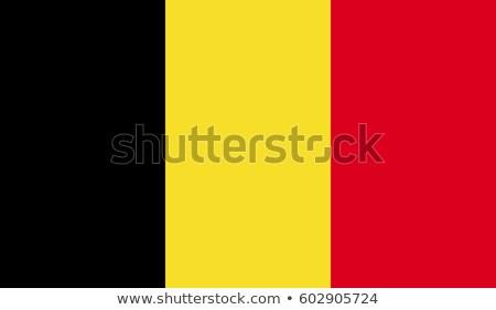 Belgian Flag Stock photo © wavebreak_media