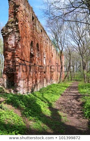 parede · de · tijolos · velho · destruído · casa · edifício · cidade - foto stock © aikon